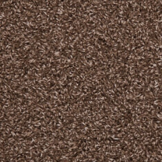 Picture of Brown colour grass | 4m x 1m | Order Online | South Africa