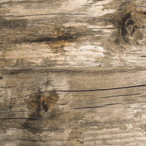 Picture of Houtbay Weathered Matt Ceramic Floor/Wall Tile | 242 x 490mm | Order Online | South Africa
