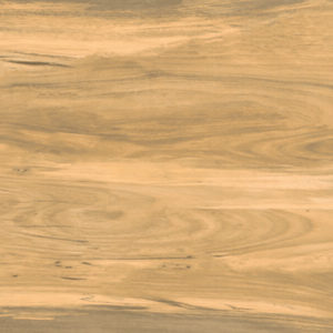 Picture of Knysna Sandal Matt Ceramic Floor/Wall Tile | 242 x 490mm | Order Online | South Africa