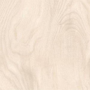 Picture of Northwood Oyster Matt Ceramic Floor/Wall Tile | 242 x 490mm | Order Online | South Africa