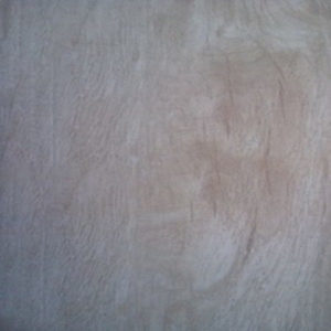 Picture of Ring Woodlook Beige Matt Ceramic Floor/Wall Tile | 242 x 490mm | Order Online | South Africa