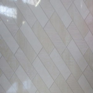 Tan Beige Shiny Glazed Ceramic Wall Tile - 200 x 300mm | Order Online | South Africa Tiles 4 All
